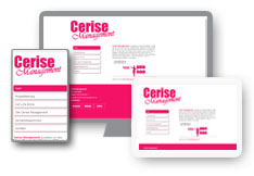 cerisemanagement.se